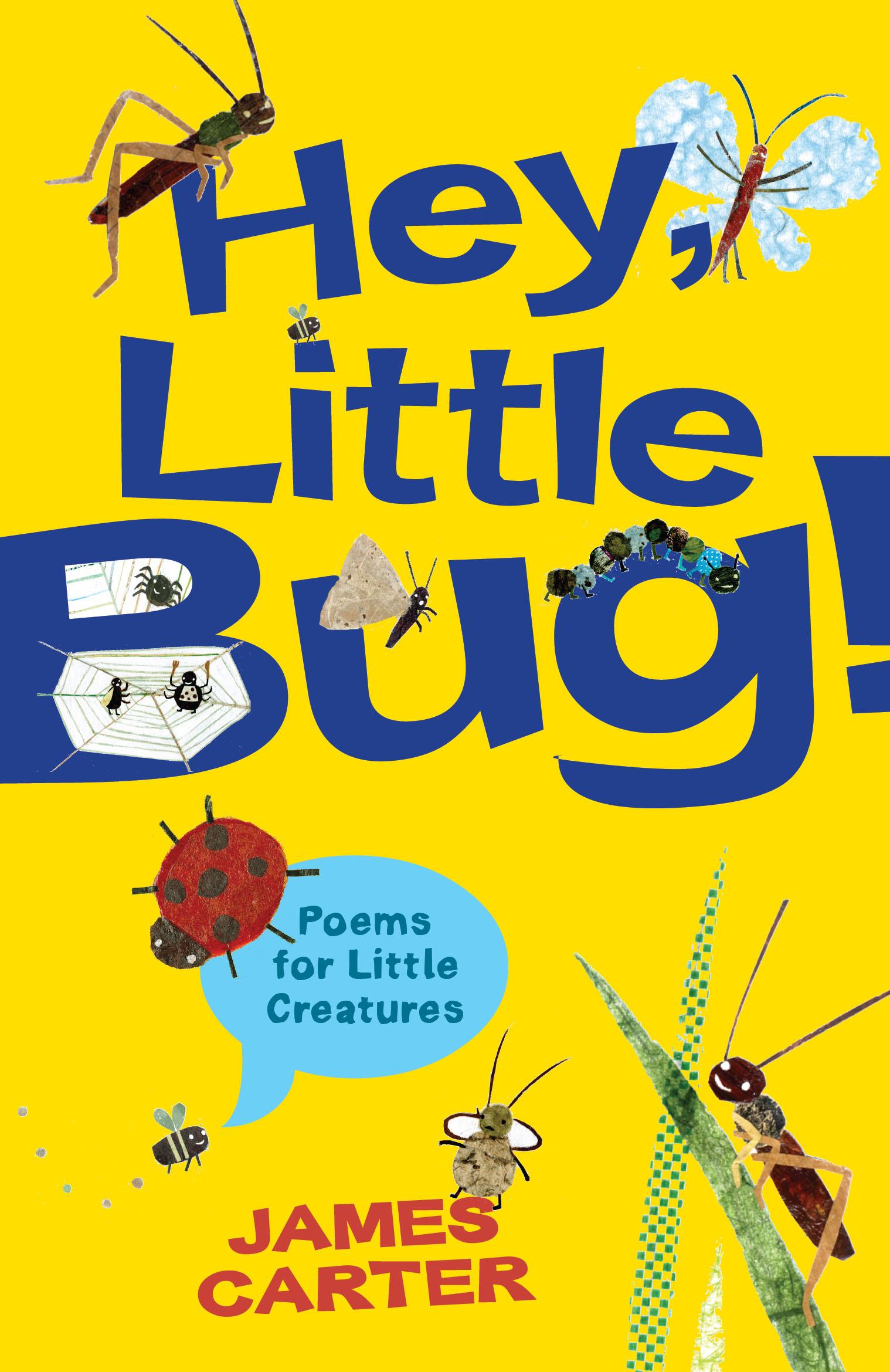 Hey Little Bug New